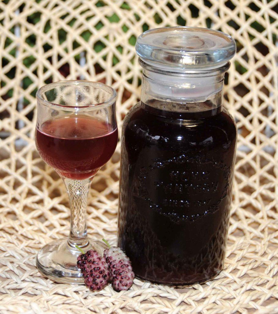 Homemade Liqueurs Liqueur two-Color Berry - Photo By Thanasis Bounas